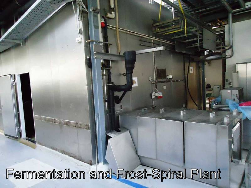 Fermentation and Frost Spiral Plant for Industrial or Commercial Bakery
